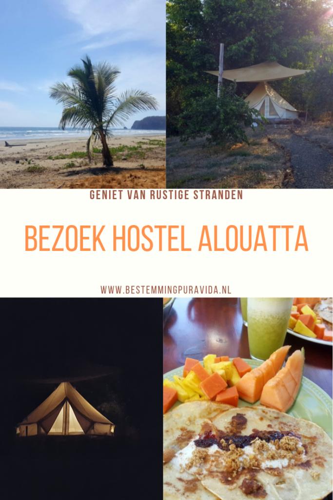 Hostel Alouatta Coyote Costa Rica