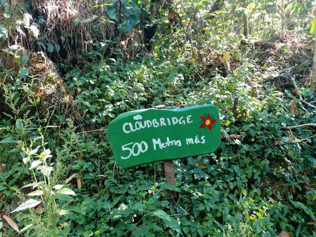 Nature Reserve Cloudbridge